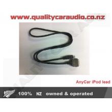 AnyCar iPod lead